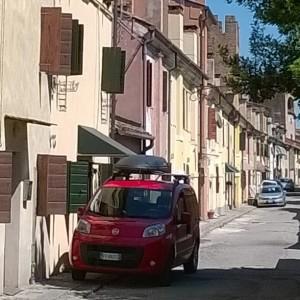 Massimo Meneghin similitudini urbane